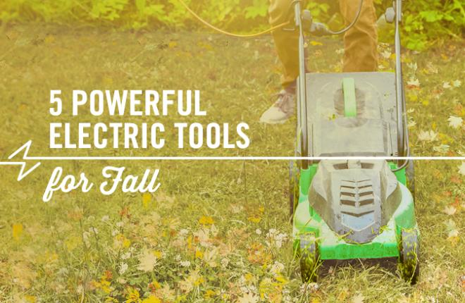 5 Powerful Electric Tools for Fall Clean-up